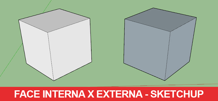 face-interna-x-face-externa